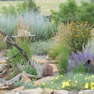 Annuals, Perennials and Ornamental Grasses
